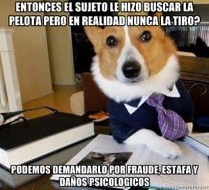 Meme perro abogado
