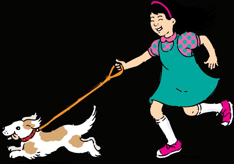 Pasear con mi perro en verano - Mi perro.info