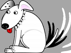 Tres falsos mitos sobre perros