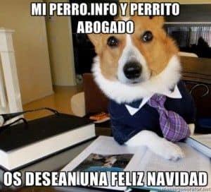 perro abogado navideño