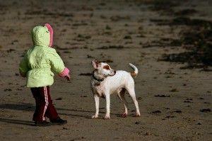 Enséñales a no tenerles miedo a los perros