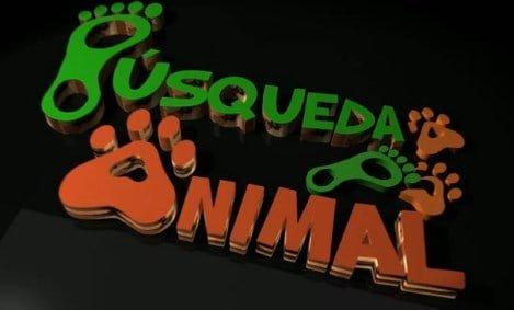 """""""Búsqueda animal"""" la serie del El Mundo para remover conciencias"""