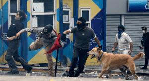 Historias con perro: Lukánikos, el perro antisistema