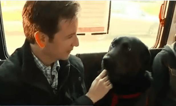 Historias con perro: Eclipse, la perra que va sola al parque