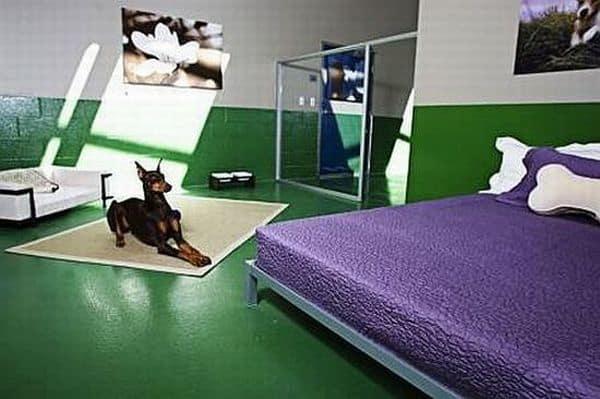 Hoteles para perros