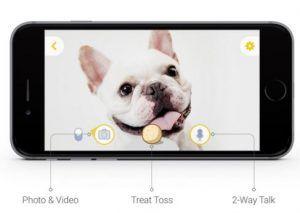 Furbo, una nueva manera de vigilar a tu perro