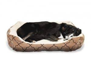 cama para perros economica
