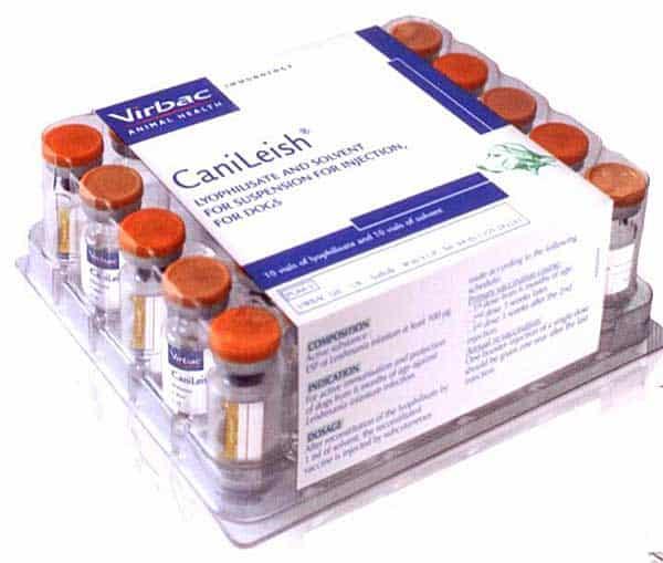La vacuna contra la leishmania 6