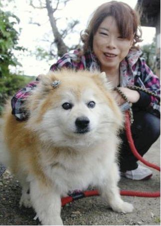 El perro más viejo del mundo 11