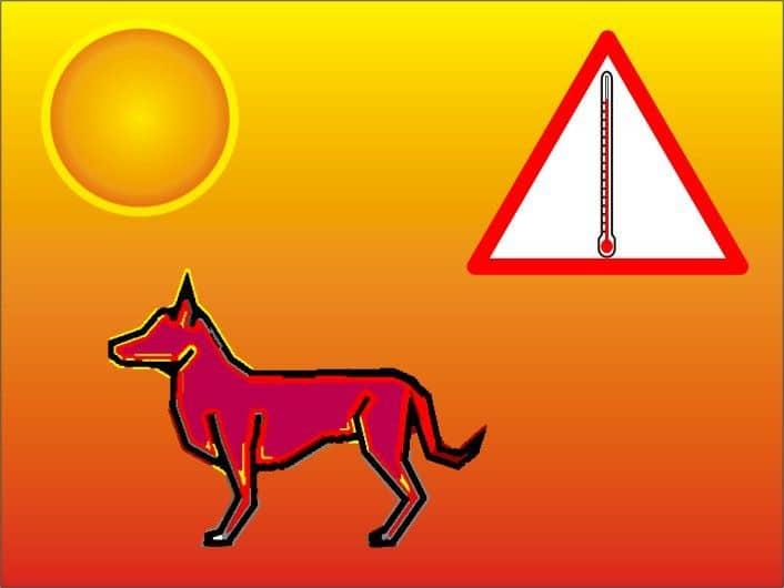 El golpe de calor: causas 3