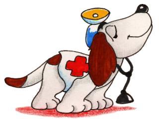 ¿Puedo darle mis medicinas a mi perro? 2