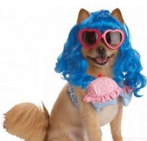 disfraz katy perry