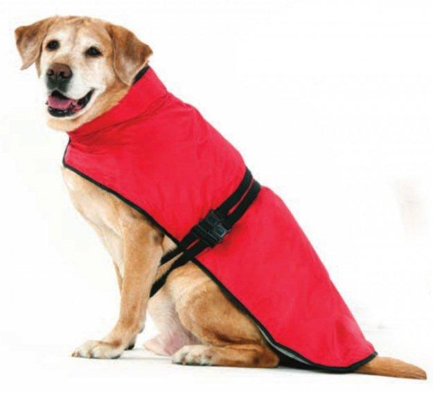 Impermeables para perros 1