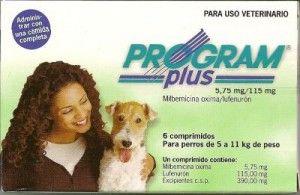 Antiparasitarios ¿cuál es el mejor para mi perro? 2