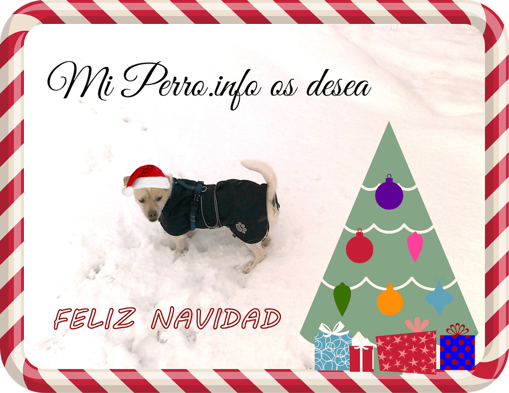Feliz Navidad para todos
