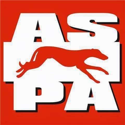 La complicada situación de A.S.P.A Mas que perros