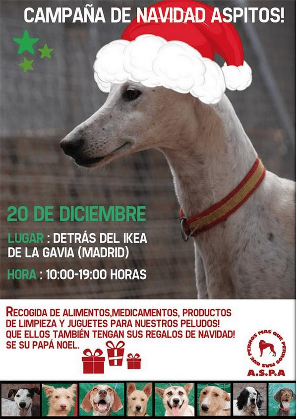 Campaña navideña ASPA