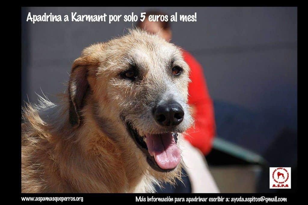 Karmant ASPA