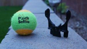 Pooch selfie, la herramienta definitiva para fotografiar a tu perro