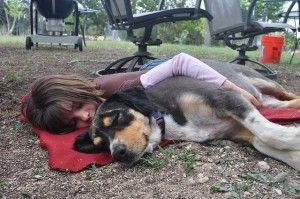 perro y niña conviviendo felices