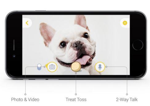 Furbo, una nueva manera de vigilar a tu perro 1