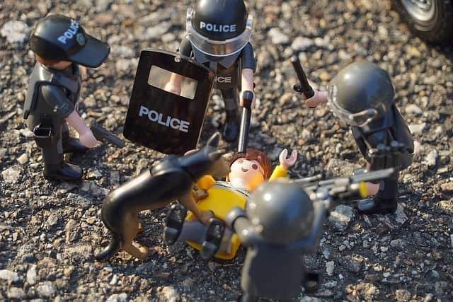 Adoptar a un perro policía
