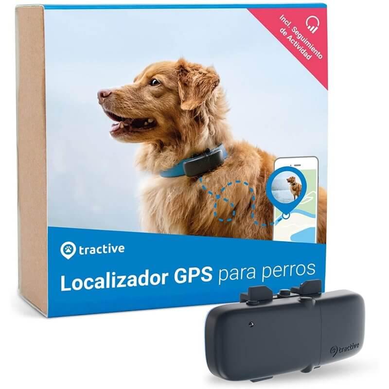¿Quieres saber dónde está tu perro las 24 horas? El GPS para perros es la solución 1